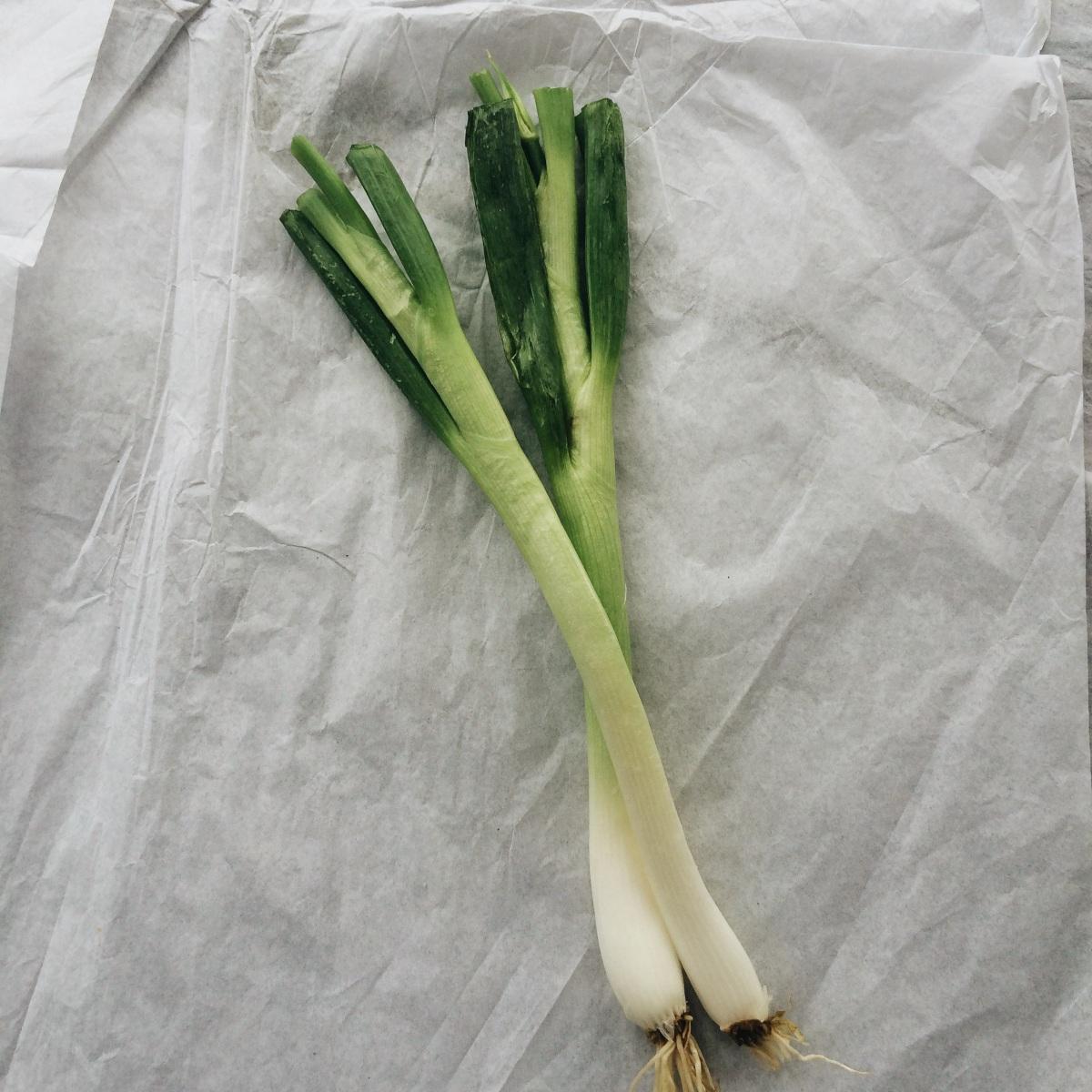 Egyptian Walking Onions